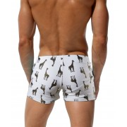 austinBem新品外貿爆款男式游泳褲男士泳褲沙灘泳衣平角泳褲